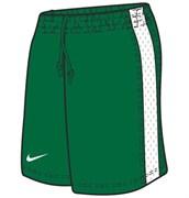 Шорты баскетбольные Nike Womens Supreme Shorts 119803-302