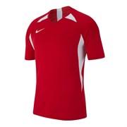 Футболка Nike Dry Legend AJ0998-657