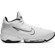 Обувь баскетбольная Nike Zoom Rize 2 TB CT1500-100